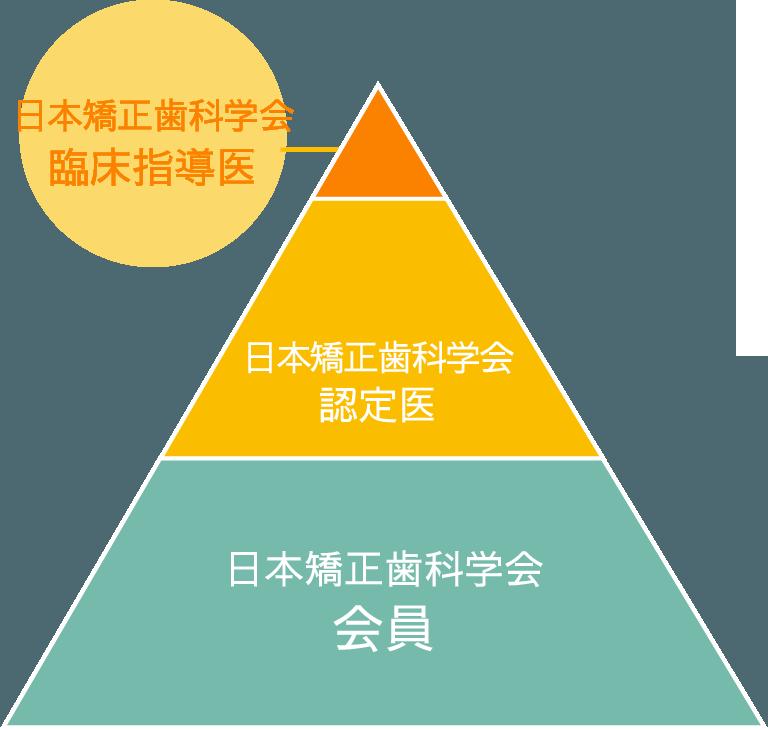 一般的な歯科医師と 日本矯正歯科学会認定医・臨床指導医の違いとは?